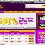 Bingo Legacy Video Slots