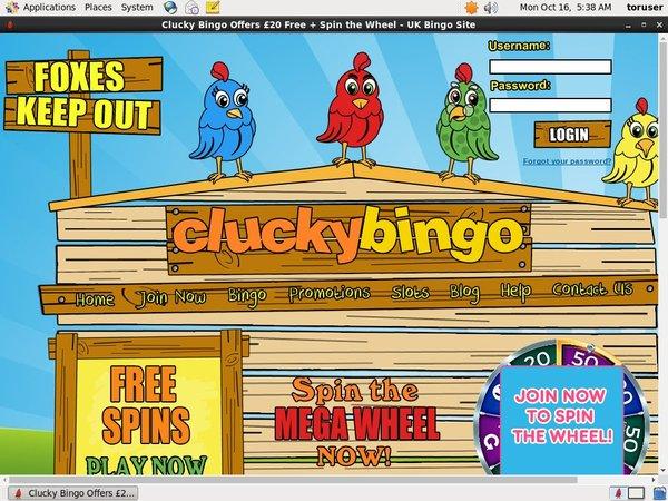 Clucky Bingo Comps
