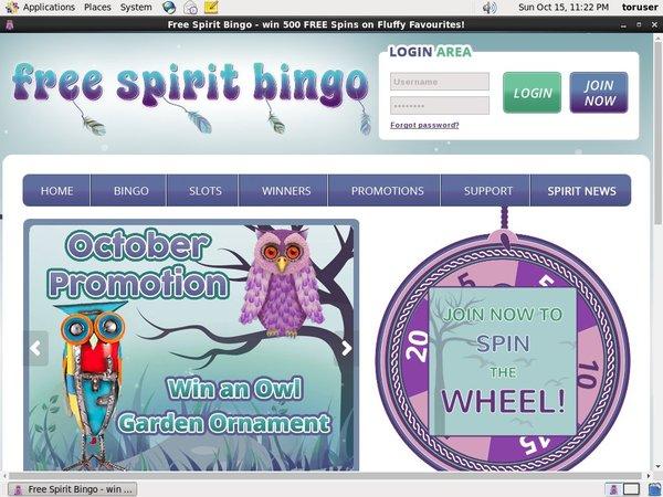 Free Spirit Bingo Deposit By Phone